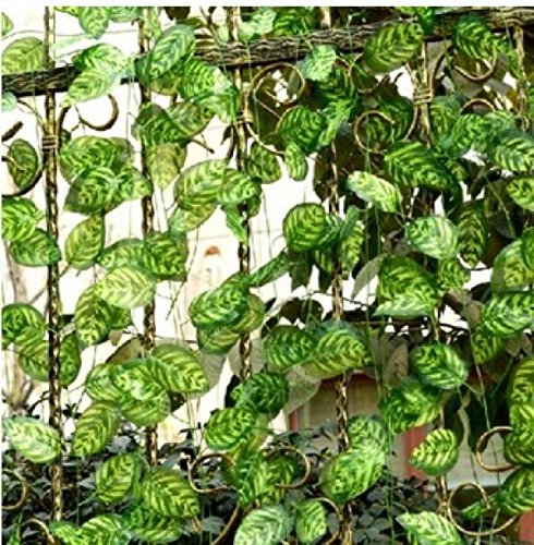 Simulation Peacock Flat Leaf Vines Climbing Plant Wedding Home Wall Decoration Decorative Fake Leaves Rattan Vine Leaves 12 pieces / lot