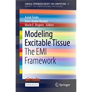 Modeling Excitable Tissue: The EMI Framework (Reports on Computational Physiology Book 7)