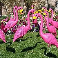 PROKTH - Flamant rose decoration jardin exterieur - 1 paire Bird figurine pour pelouse étang Décoration de fête: Amazon.es: Hogar