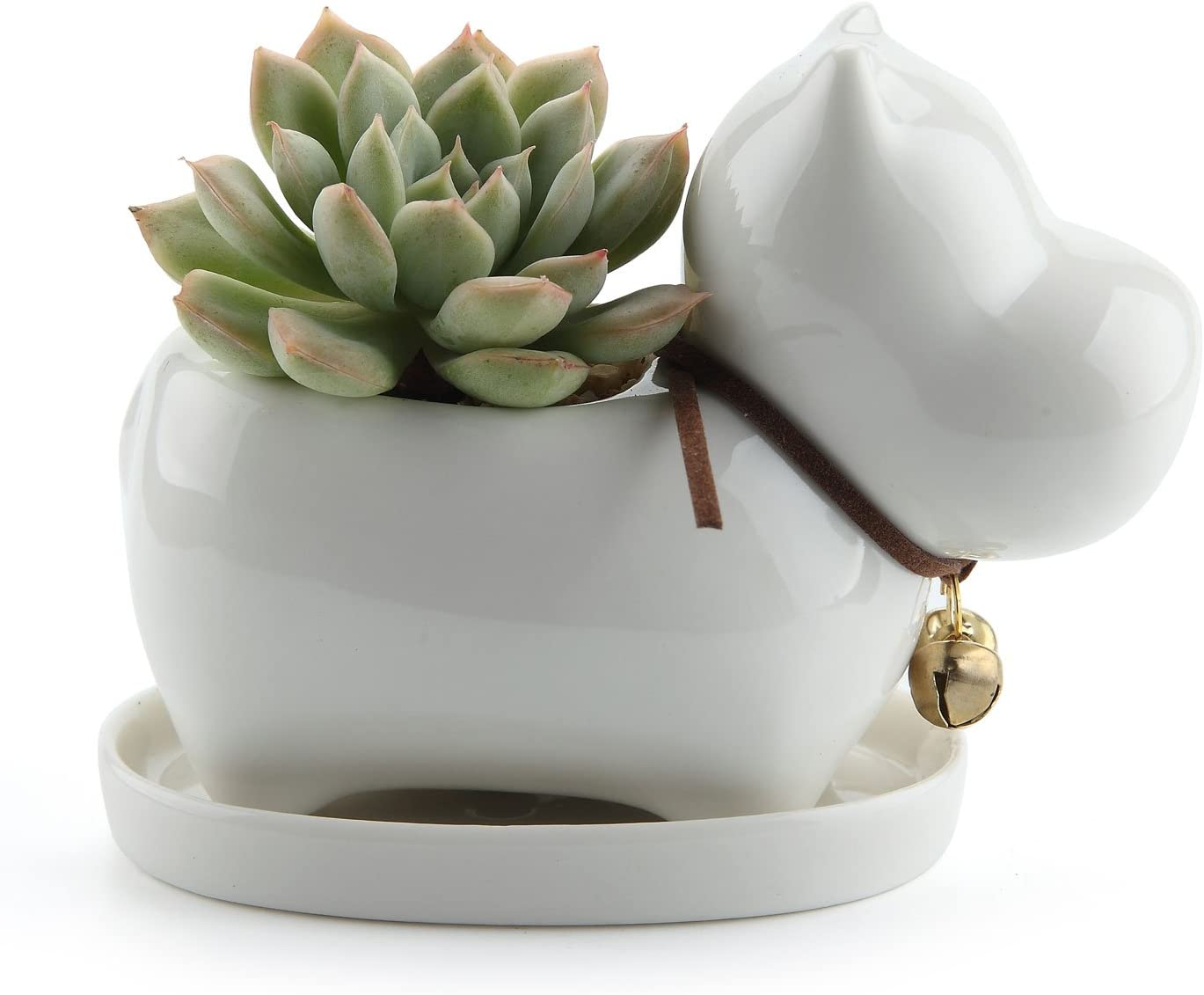 T4U Ceramic Succulent Pot White, Funny Hippo Design Cactus Flower Plant Planter Container Porcelain Holder Home Office Decoration with Golden Bell and Tray – Pack of 1
