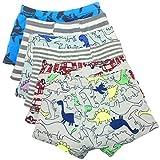 Boy's Boxer Briefs Comfortable Cotton Short Toddler Underwear Set (4-6 Years, D- 6 Pack)