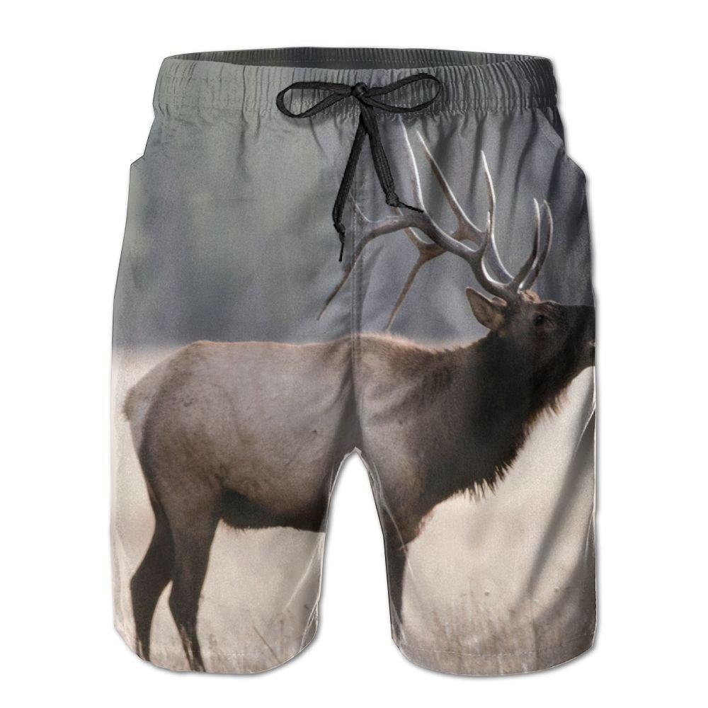 Tvsuh-u Elk Mens Casual Beach Shorts Quick Dry Swim Trunk