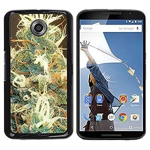 - Marijuana Kush Weed - - Monedero pared Design Premium cuero del tir¨®n magn¨¦tico delgado del caso de la cubierta pata de ca FOR Google Nexus 6 & Motorola Nexus 6 Funny House