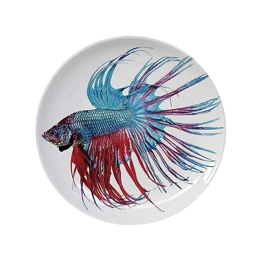 YOLIYANA - Plato Decorativo Redondo para Acuario, diseño de pez de ...