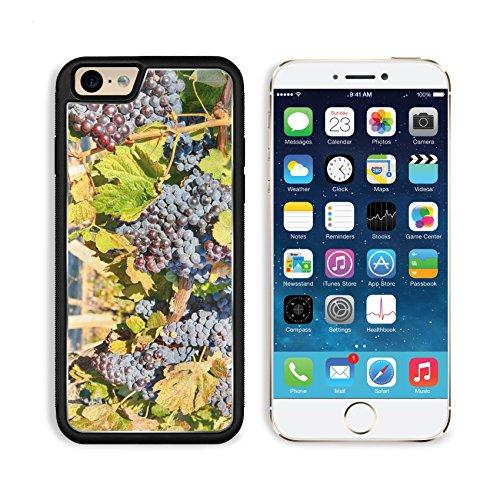 MSD Premium Apple iPhone 6 iPhone 6S Alu - Sauvignon Mirror Shopping Results