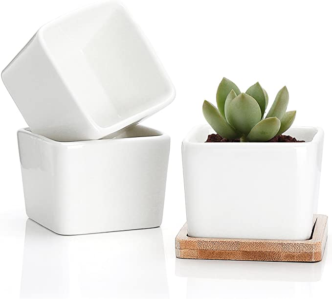 Ceramica de cactushttps://amzn.to/2L09zgU