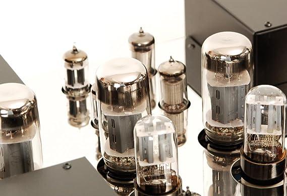 Arion Elektra - Amplificador de tubos: Amazon.es: Electrónica