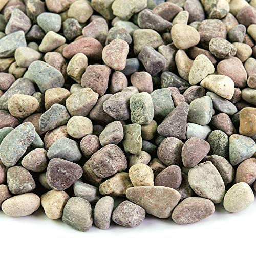 (Southwest Boulder & Stone Landscape Rock and Pebble | 20 Pounds | Natural, Decorative Stones and Gravel for Landscaping, Gardening, Potted Plants, and More (Patagonia, 3/8 Inch))