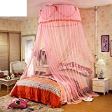 Are There Beds Bigger Than King Size Telescopic lifting dome mosquito net,Double court princess bed canopy Bunk bed home mosquito netting keeps away insects & flies-B King