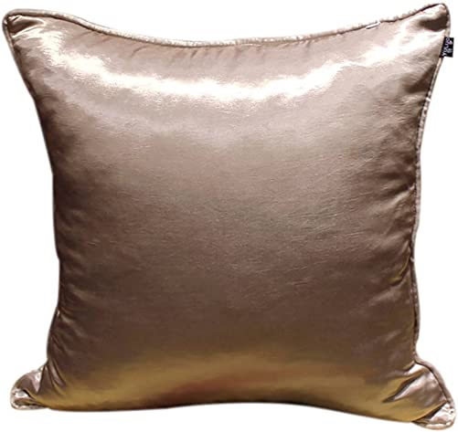 ChezMax Faux Silk Blend Elegant Sofa Seat Cushion Cotton Square Decorative Throw Pillow Cushion Champagne 20 X 20