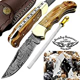 Pocket Knife Olive Wood 6.5'' Damascus Steel Knife Brass Bloster Back Lock Folding Knife + Sharpening Rod Pocket Knives 100% Prime Quality+ Buffalo Horn Small Pocket Knife + Damascus Knife