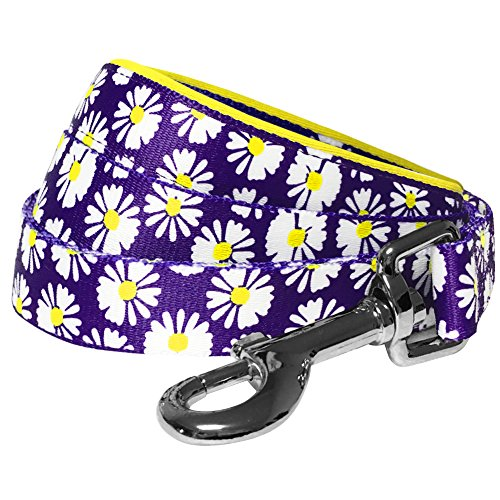 - Blueberry Pet 2 Patterns Loving Daisy Prints Dog Leash with Soft & Comfortable Handle, 5 ft x 3/4