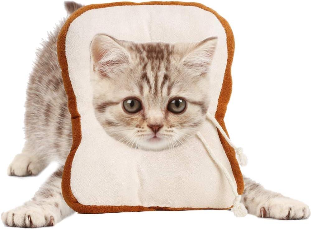 AEITPET Collar isabelino Gato, Collar de recuperación para Mascotas, Collar de protección para Gatos, de Mascota Collar Cono Protector Collares de Suave Ajustable Collar (S, Blanco)