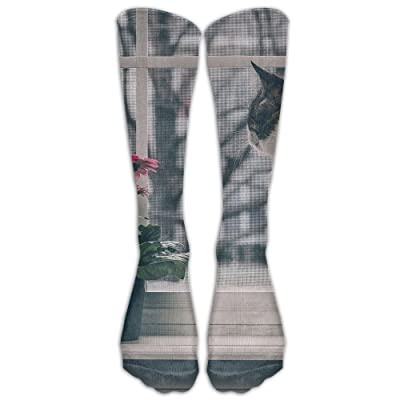 Yhj Over The Calf Tube Ankle Socks Knee Length Cat With Box Sock Sport Legs/Boots Knee High Mid-calf