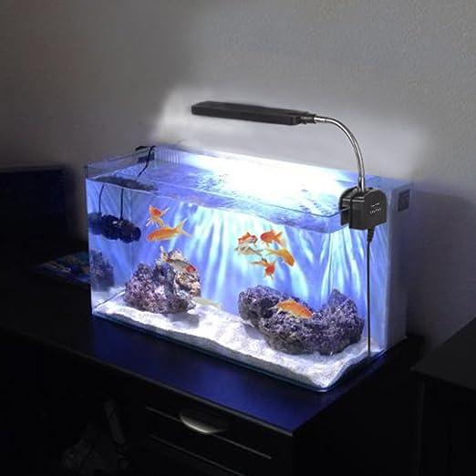 Asvert Lámpara de Acuario LED Iluminación de 3w con Fijador y Cuello Ajustable: Amazon.es: Iluminación