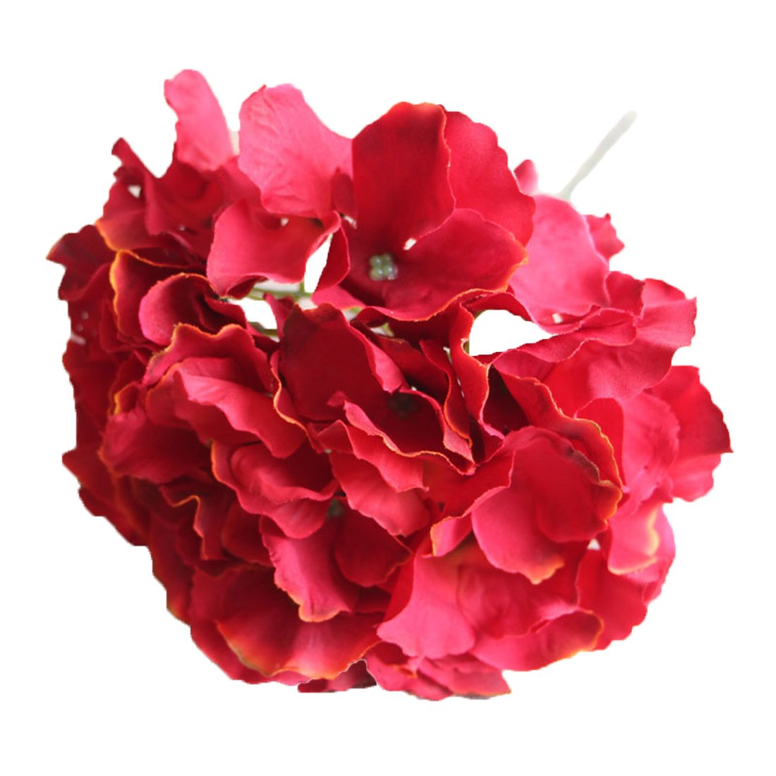 Calcifer 10 Pcs Mallorca Hydrangea Flowers Artificial Flowers for Home Garden Wedding Bohemia Hat Decor (Champagne)