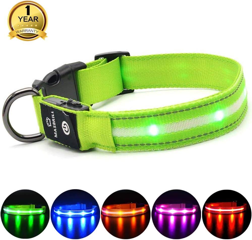 MASBRILL Collar LED Perro, Collar para Perro Luminoso Recargable y Impermeable, 3 Modos de Iluminación led y Tamaño Ajustable para Perros Pequeños Medianos Grandes(Verde L)