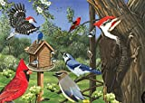 Cobble Hill Tray Puzzles 2-Pack - Bundle with Around the Birdfeeder (35 Piece) and Create Your Own 20 Piece Puzzle - Easy Puzzle Handling- Ages 3 and Up