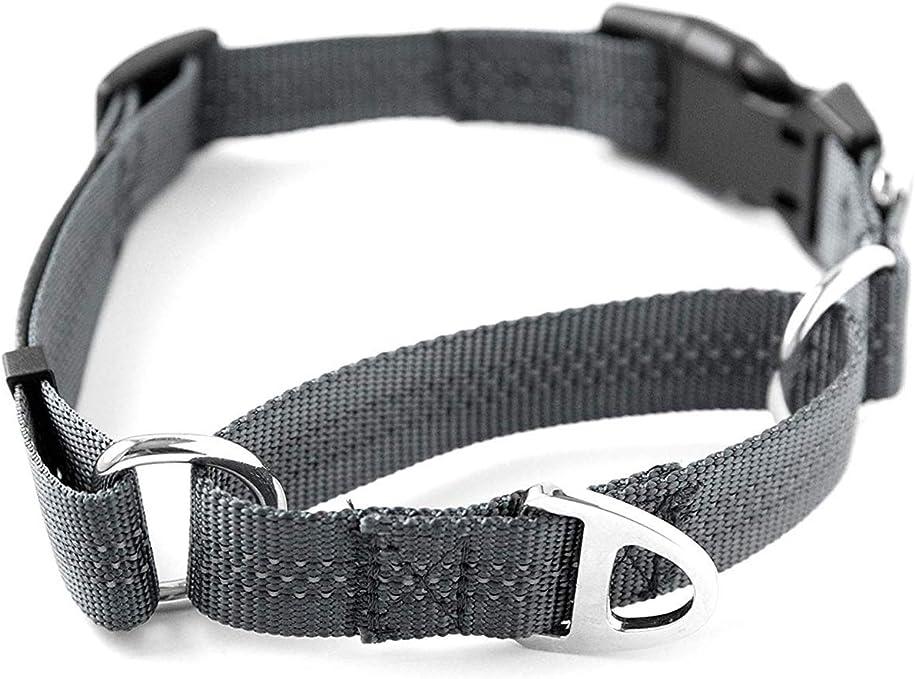 Mighty Paw Martingale Nylon Training Collar | Amazon