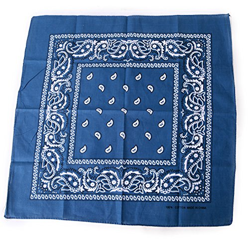 HDE 100% Cotton Double Sided Paisley Print Bandana Handkerchief Headwrap Doo Rag (Ocean Blue)