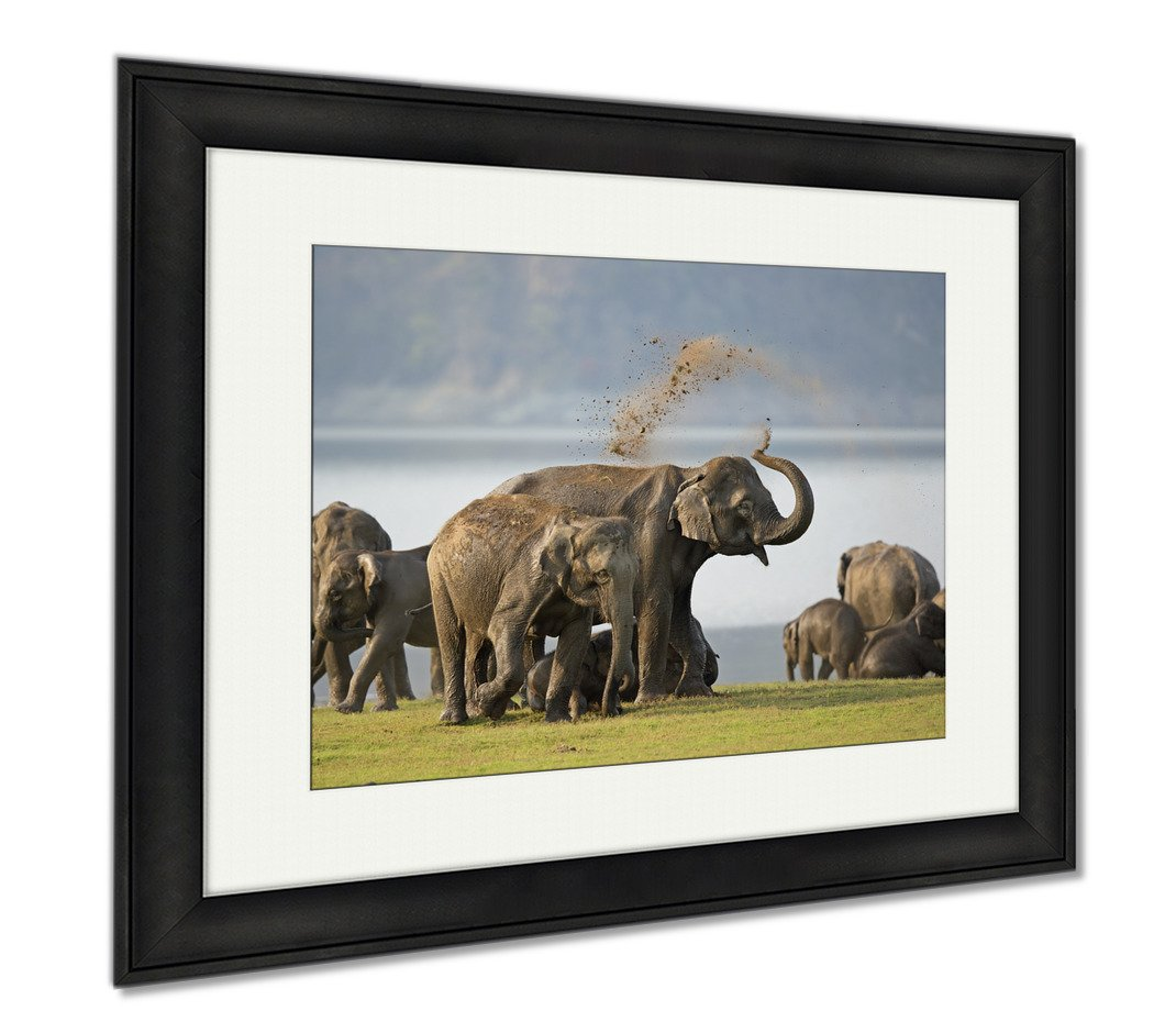 Ashley Framed Prints Elephant Bath, Modern Room Accent Piece, Color, 34x40