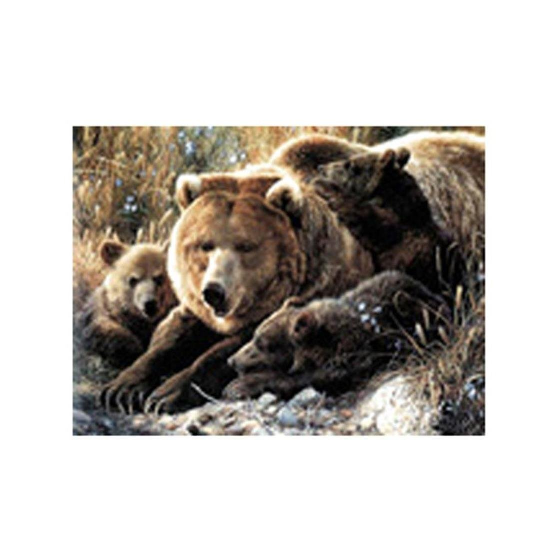 Stealstreet 63,5 cm Mountain Bears Weben Bild B073MBV52C | Innovation