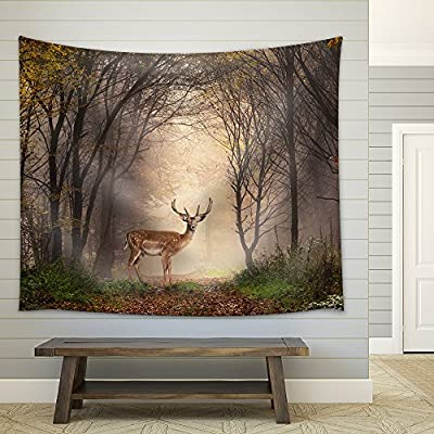 Fallow Deer Standing in a Dreamy Misty Forest with Beautiful Moody Light in The Middle and Framed by Darker Trees Fabric Wall