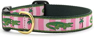 """product image for Up Country All C L Alligator Dog Collar Width 1"""""""