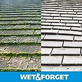 Wet & Forget .75 Gallon Moss, Mold, Mildew