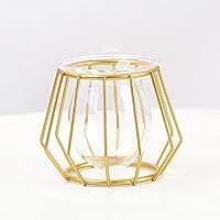 Youmeer Suportes para plantas aéreas de metal vaso de flores geométrico moderno Tillandsia suportes de exibição design…