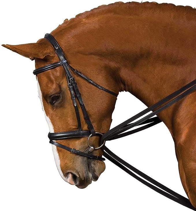 Kincade Unisex Leather Draw Reins Horse Training Aid Strap