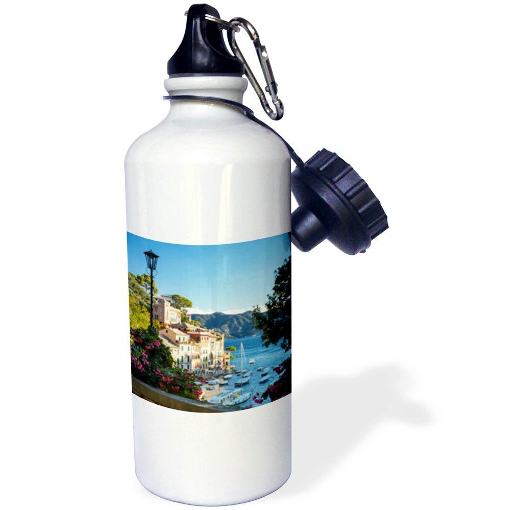 3dRose Danita Delimont - Italy - View from balcony over harbor town of Portofino, Liguria, Italy - 21 oz Sports Water Bottle (wb_277564_1)