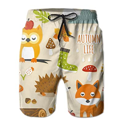 Weeben Cartoon Owl Fox Pattern Beach Shorts Men Quick Dry with Pockets