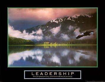 Amazoncom Leadership Bald Eagle Motivational Poster Art Print