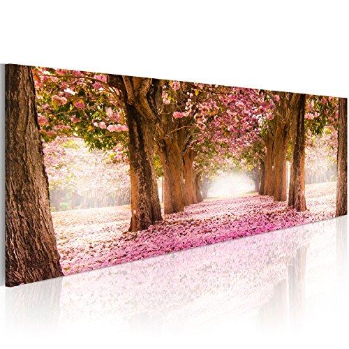 Bilder 135x45cm ! Echtes XXL Panoramabild - Fertig Aufgespannt - TOP - Vlies Leinwand - 1 Teilig - Wand Bild - Kunstdruck - Wandbild - Park Natur Blumenweg c-A-0052-b-b 135x45 cm B&D XXL