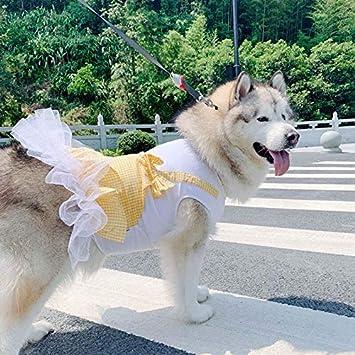 Amazon.com: Vestido para perro, de primavera, a cuadros ...