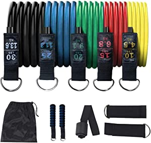 PROTAURI Fitness Resistance Band Exercise Bands Including 5 Stackable Exercise Bands with Door Anchor,Handles,Carrying Case for Resistance Training,Physical Therapy,Home Workouts,Yoga.