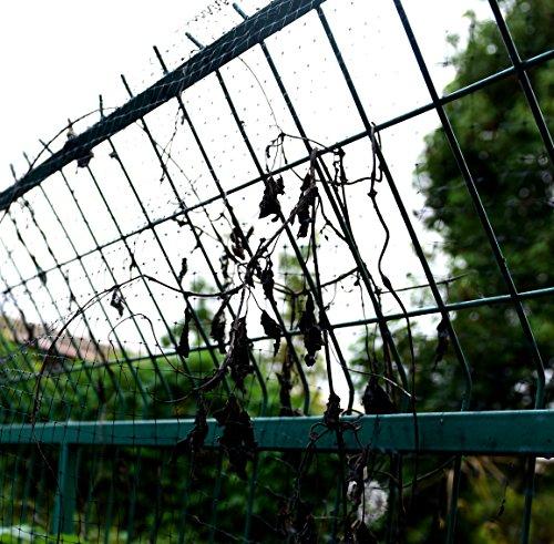 Buy nylon netting for garden