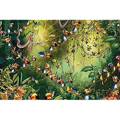 Piatnik 5491Toucan in The Jungle 1000Piece Jigsaw Puzzle: Toys & Games