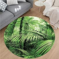 Nalahome Modern Flannel Microfiber Non-Slip Machine Washable Round Area Rug-Palm Trees and Exotic Plants in Tropical Jungle Wild Nature Zen Theme Illustration Green area rugs Home Decor-Round 67