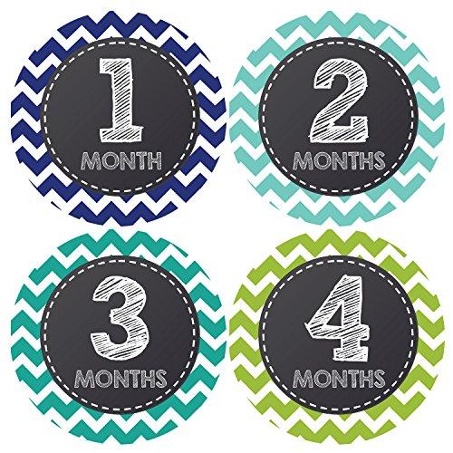 Pinkie Penguin Chalkboard Baby Monthly Stickers - Milestone Onesie Stickers - Baby Boy - 1-12 Months - Baby Shower Gift