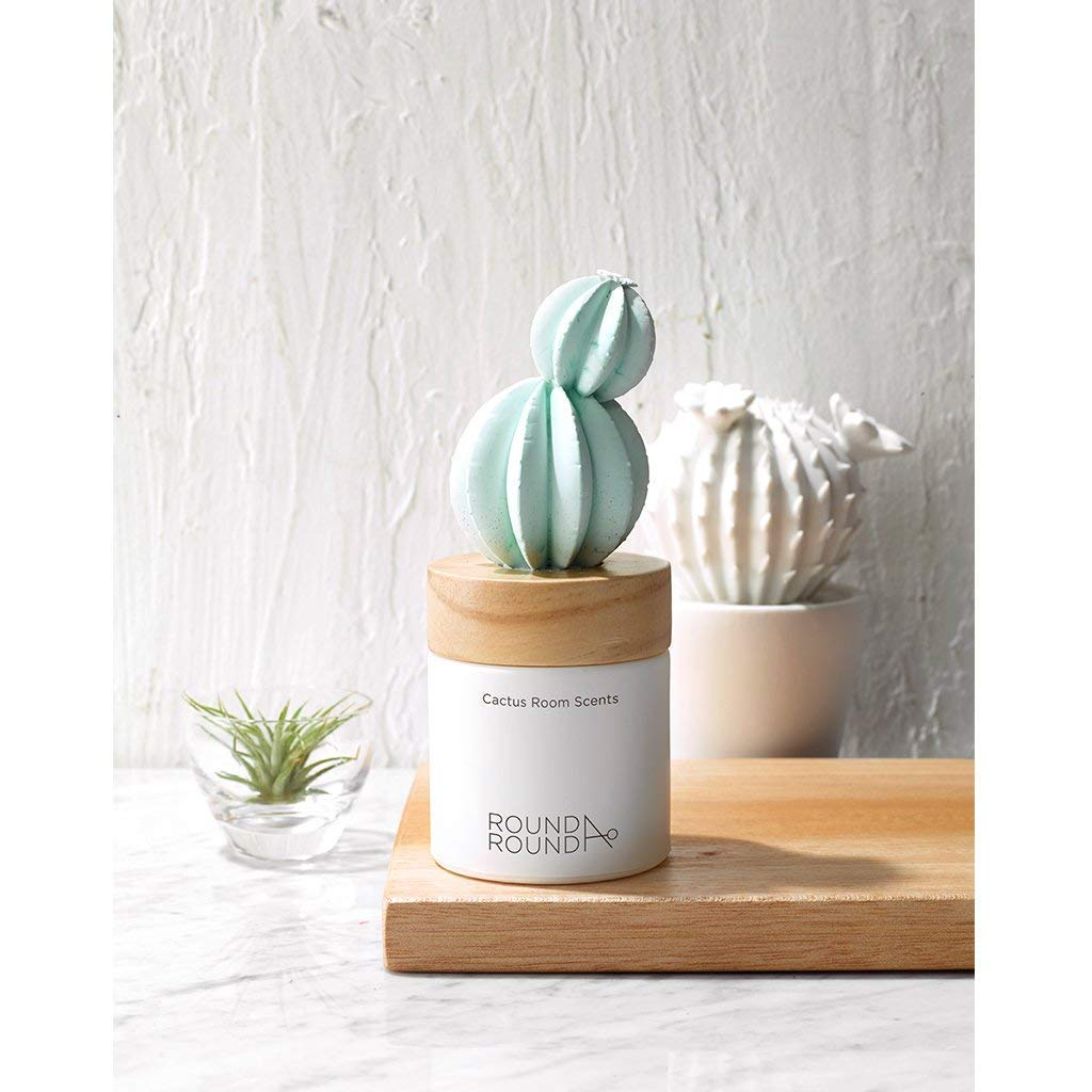 ROUND A'ROUND Cactus Room Scents 100ml / Gypsum Reed Fragrance Diffuser for Fragrant Homes, Rooms, Office, Bathroom, Living Room, Great Home Fragrance Gift (Goldenbarrel Cactus) by ROUND A'ROUND (Image #4)