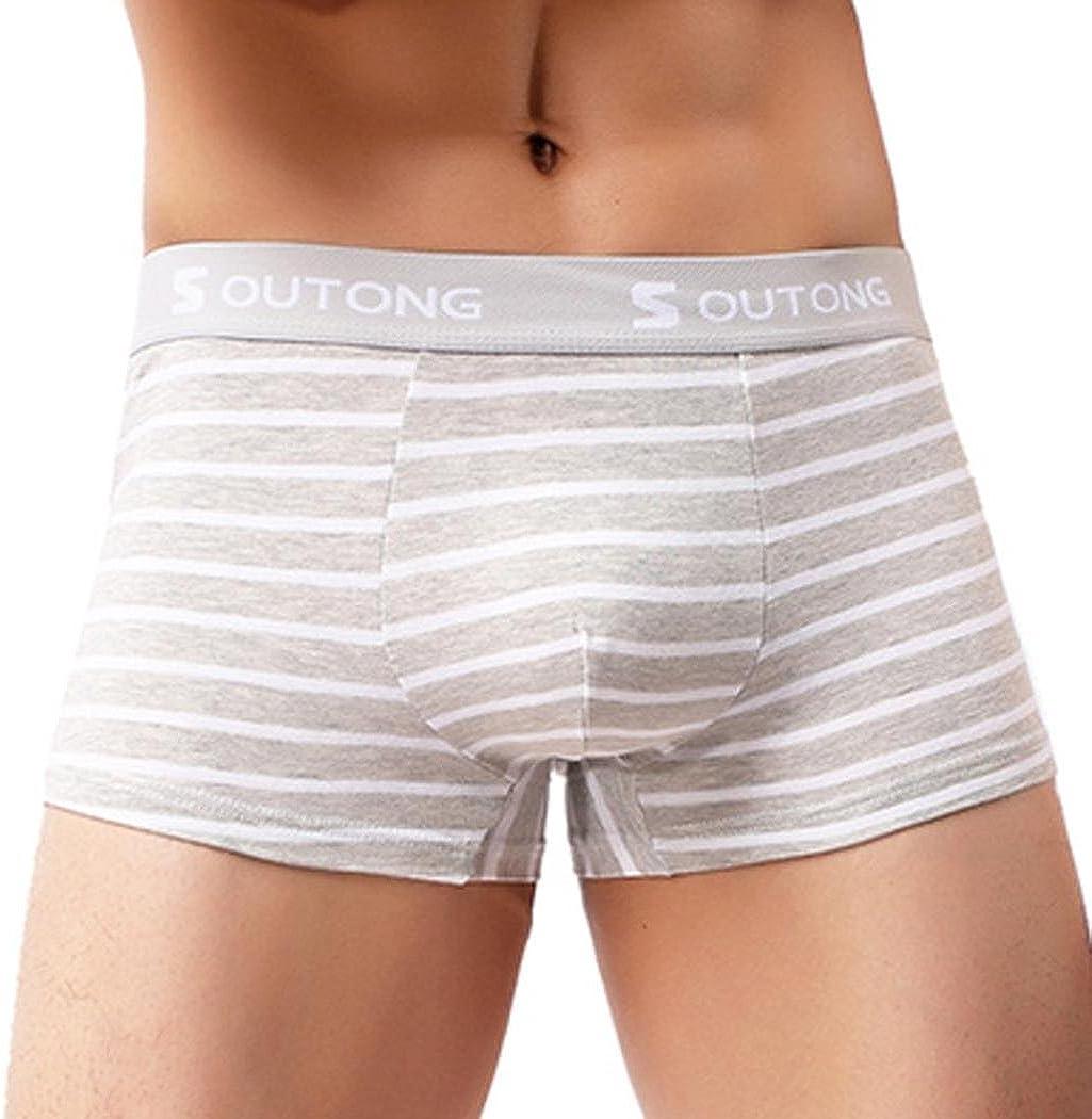 Herren Unterwäsche Shorts Atmungsaktiv Slips Nahtlos Nylon Ausbuchtung