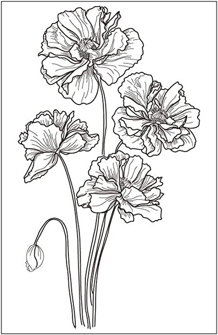 Flowers Poppy Budding Poppies Stamp Rubber Clear Stamp//Seal Scrapbook//Photo Album Decorative Card Making Clear Stamps