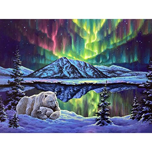 Adarl DIY Painting Paint by Numbers Kit for Adult, Polar Aurora with Brushes Paint for Adults Painting on ()