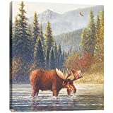 Tree-Free Greetings EcoArt Home Decor Wall Plaque, 11.25 x 11.25 Inches, River Moose Themed Wildlife Art (81062)