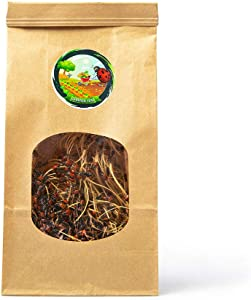 Gardner Time 1500 Live Ladybugs - Good Bugs for Garden - Ladybugs - Guaranteed Live Delivery