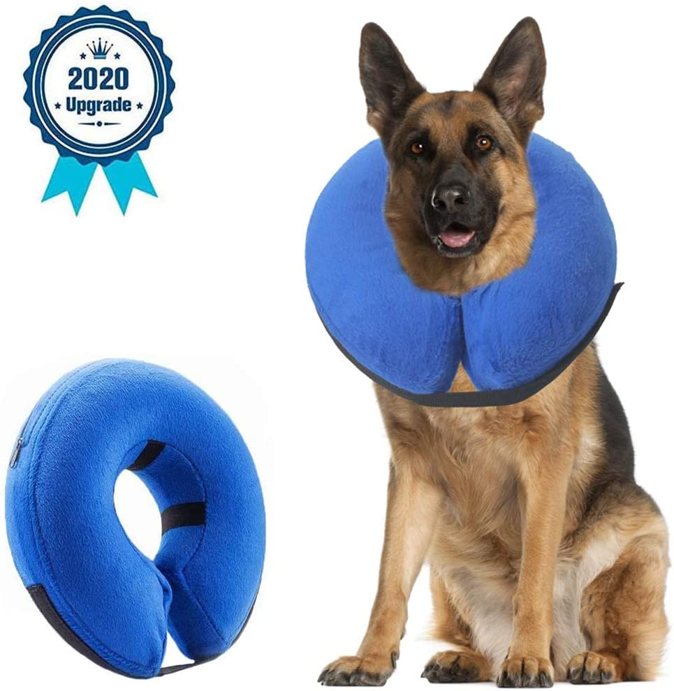 6 Best Inflatable dog cones 3