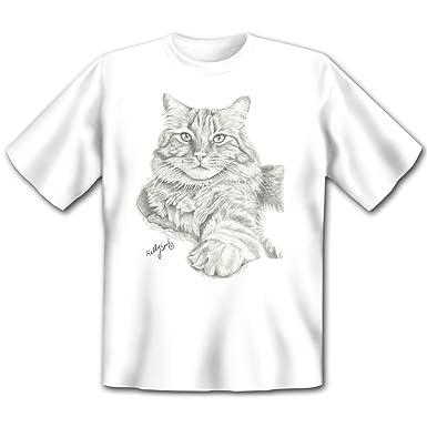 Sugerente Kelly Six Gatos Dibujo: Tabby Cat - Casa Gato gato ...