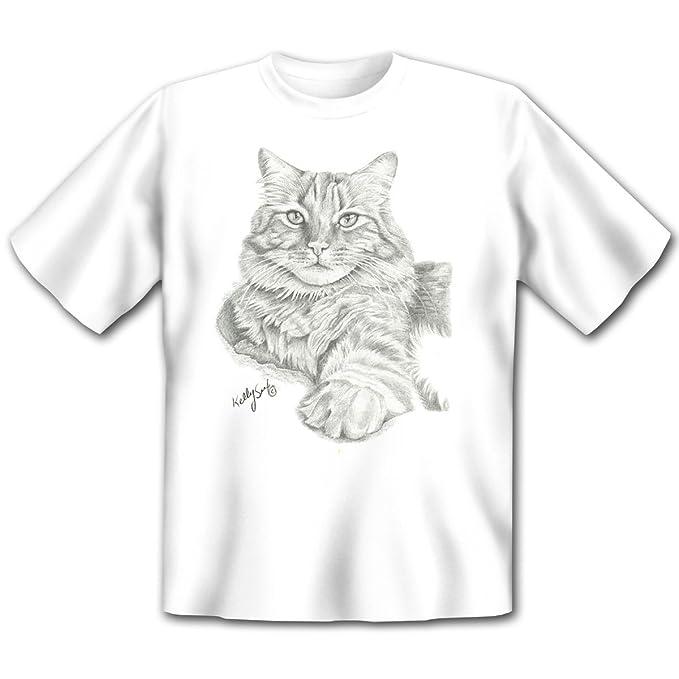 Sugerente Kelly Six Gatos Dibujo: Tabby Cat - Casa Gato gato diseño camiseta de: en blanco: Amazon.es: Ropa y accesorios